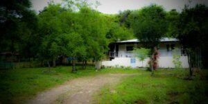 ویلا ماسال کد 351